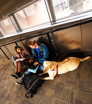 Student with seeing-eye dog sitting with another student in skyway